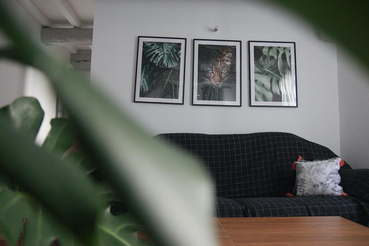 décoration jungle avec poster store